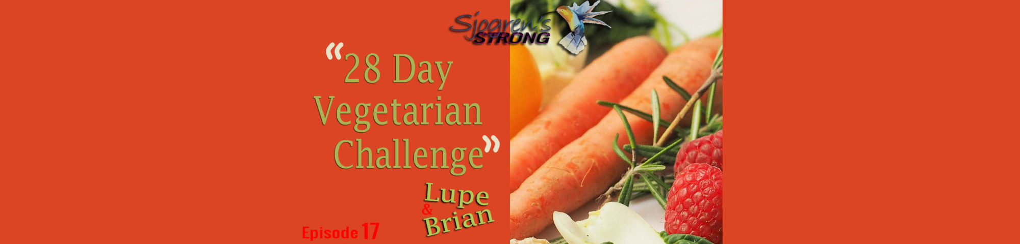 28 Day Vegetarian Challenge, episode 17 banner